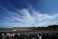 決勝レース: 青空の下、1~2コーナーを駆けるGTマシン